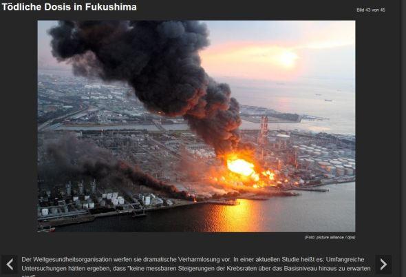 n-tv-fuku4